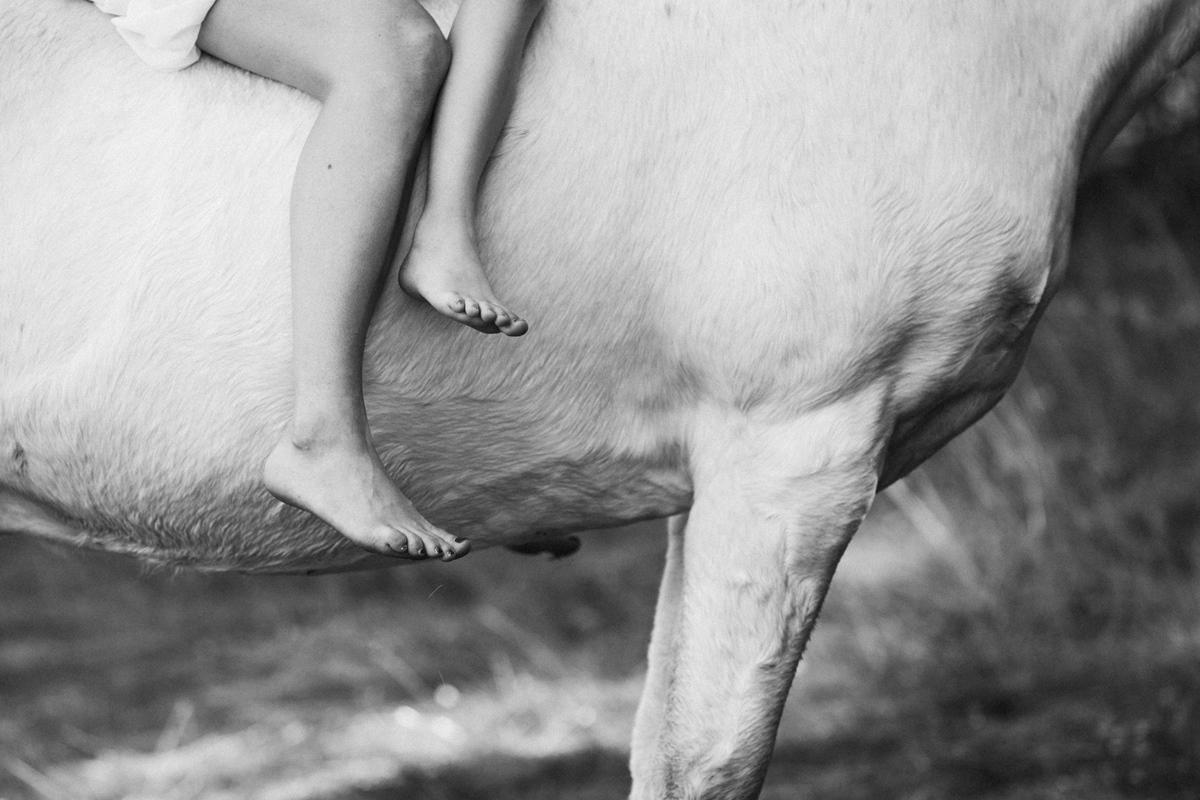 Familienfotos-Würzburg-Pferd-Mutter-Tochter-14