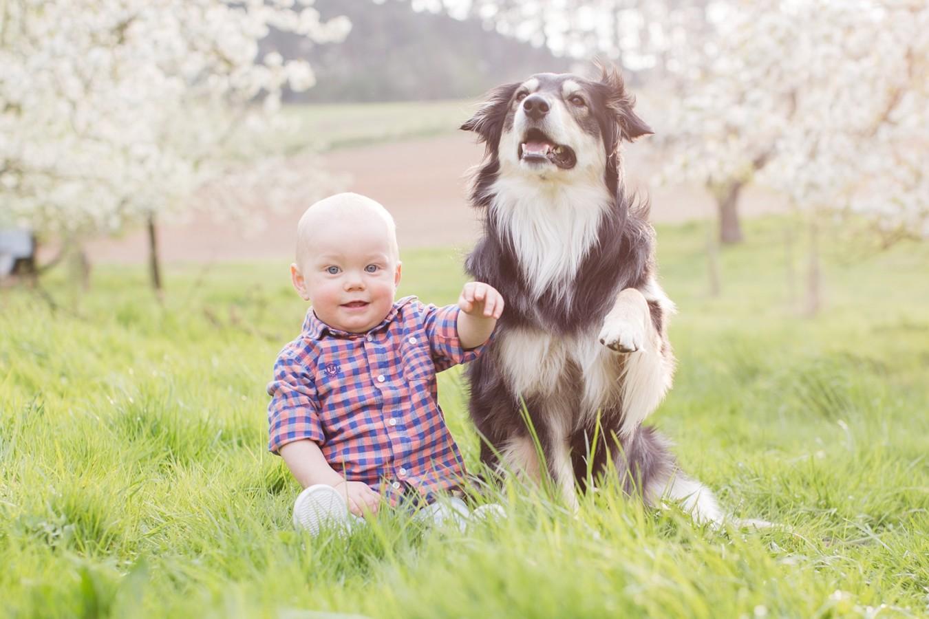 Familienfotos-Würzburg-fotograf (3)